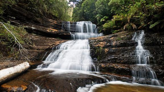 Lady Barron Falls at Mt Field